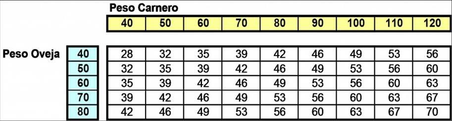 tabla pesos