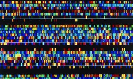 human-dna-sequence-009